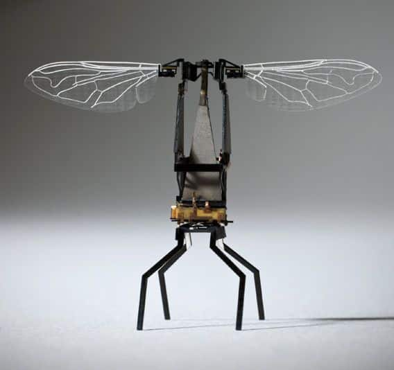 abeja-robot