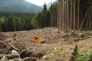 Unhappily-Ever-After- Winnie-The-Pooh