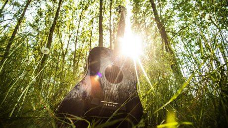 canciones-ecologicas
