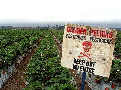 pesticidas-monsanto