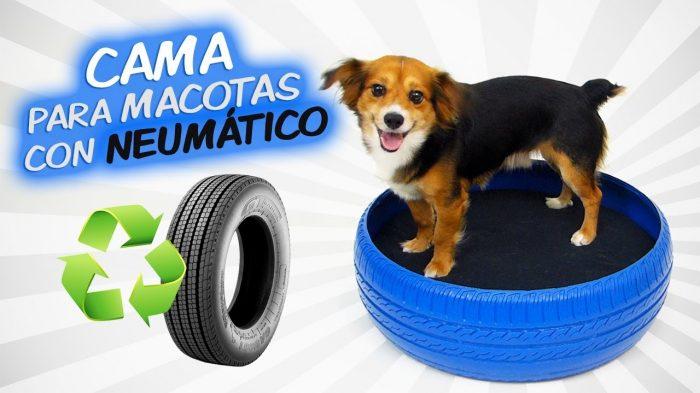 cama-para-mascotas-neumatico