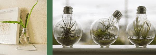 Reciclaje-bombillas