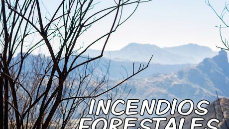 Incendio-forestal-tejeda